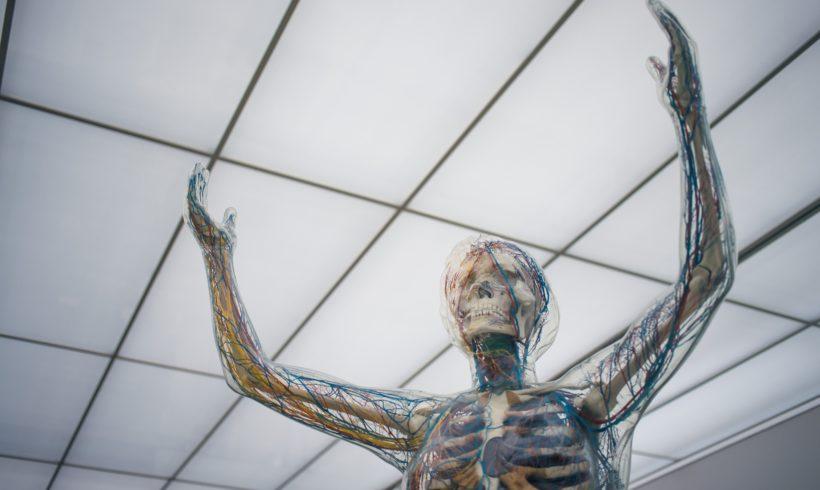 OBAT DIABETES HANYA SEBAGIAN HAL TENTANG NEUROPATHY